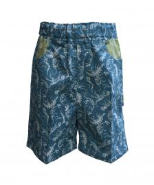 Boys blue dinosaur shorts