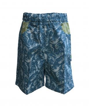 Boys blue dinosaur shorts